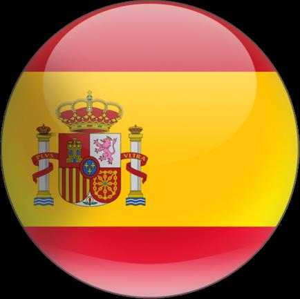Disponível em Espanhol